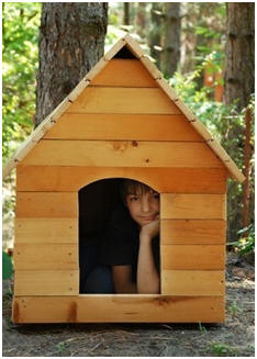 Free DIY Dog House Plans - Choose from thirty eight great designs.