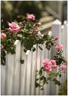 Build Your Own Fence, Gate or Screen Wall - Get free plans and building instructions.