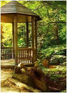 Free Gazebo, Pergola and Arbor Plans - Grace your landscape with any of over fifty beautiful designs.