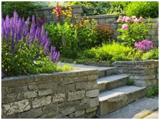 7,000+ Landscape Design Ideas
