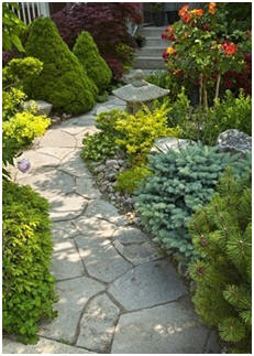 Free Landscaping Guides - Learn how to make your own stone or brick walkways and patios. Learn how to build Koi ponds and water gardens. Get hundreds of free landscape project plans.